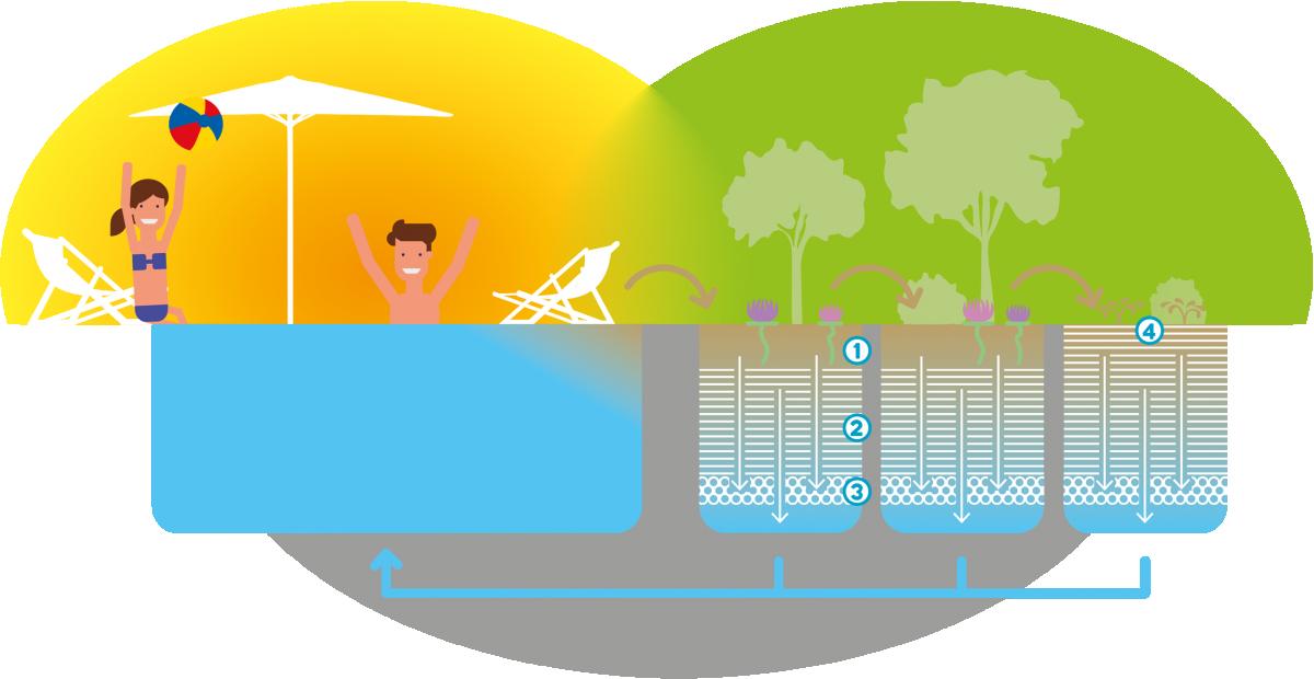 Naturbadesee - ökologische Reinigung